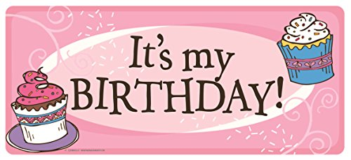Mad Mags It's My Birthday Pink Cupcake Magnet Decoration for Car, Office, or Refrigerator ()