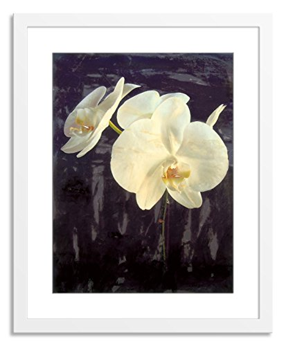 Gallery Direct Midnight Garden I Artwork on Paper, Wood by Sara Abbott with White, Clean and Simple Frame, 36