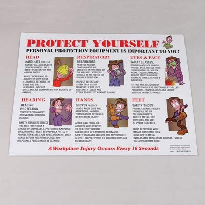 (Prinzing Personal Protective Equipment Laminated Safety Poster (9 Pack))