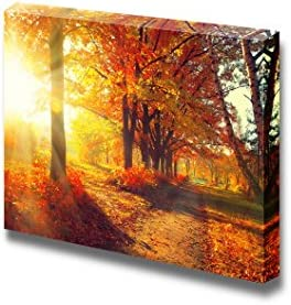 Beautiful Scenery Landscape Autumnal Trees and Leaves in Sun Rays Wall Decor