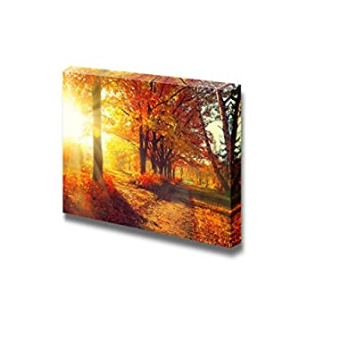 Canvas Prints Wall Art - Beautiful Scenery/Landscape Autumnal Trees and Leaves in Sun Rays | Modern Wall Decor/Home Decoration Stretched Gallery Canvas Wrap Giclee Print & Ready to Hang - 24