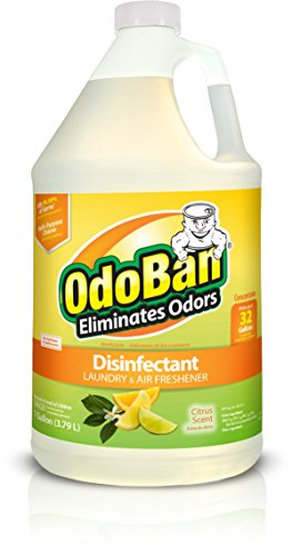 OdoBan Concentrate Disinfectant Laundry and Air Freshener Citrus Scent, 1 Gal. by OdoBan