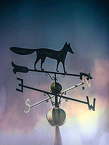 Rain On The Old Fox Weather Vane by Leslie Montgomery Art Print, 9 x 12 inches