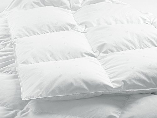 - Highland Feather Manufacturing 30-Ounce Grenoble European Down Duvet, Queen, White