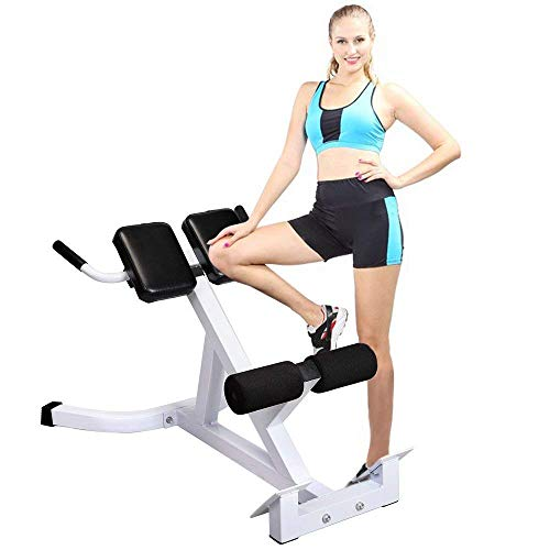 SSLine Roman Chair Hyperextension Bench Adjustable Abdominal Muscle Workout Bench AB Lower Back Home Gym Fitness Equipment