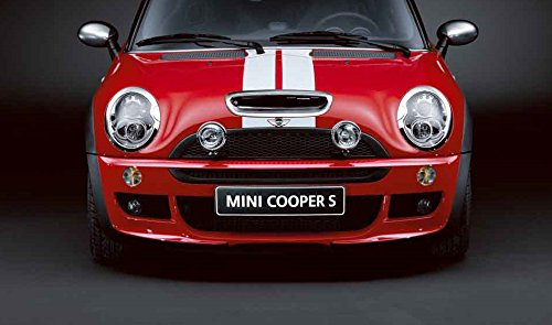 MINI Genuine Lower Bumper Front Grid Radiator Grille R50 R52 R53 1110139106
