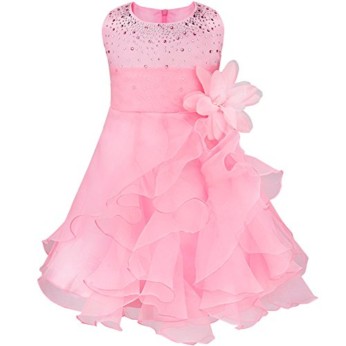 (FEESHOW Baby Girls Rhinestone Organza Flower Christening Baptism Party Dress Pink 18-24 Months)