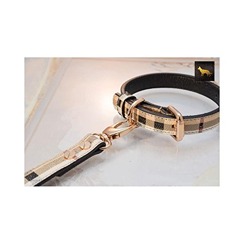 Leather Paws Small Plaid Berry Designer Leather Collar (Designer Dog Collar And Leash)