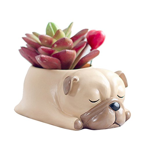 Cute Animal Shaped Cartoon Home Decoration Succulent Vase Lovely Pug Flower Pots By (Pug Garden)