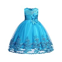 Lake Blue Girl Sequins Beading Lace Ball Gown Dress Wedding Party Formal Size 12M 18M 24M Flower Dresses Girls Special Occasion Fancy 2-3 Years Princess Summer Knee Sleeveless Blue 100