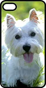 Westie West Highland Terrier in the Summer Grass Black Plastic Case for Apple iPhone 5 or iPhone 5s