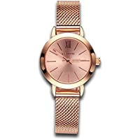 Women's Watches Gorgeous Waterproof Quartz Wristwatches Mesh Alloy Bracelet Small Size Rose Gold Color