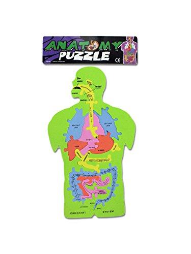 Bulk Buys KK646 Anatomy Foam Puzzle Case of 144