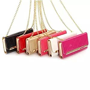 DD Metal Chain Fashion Handbags PU and TPU Full Body Case with Card for iPhone 5/5S (Assorted Colors) , Rose