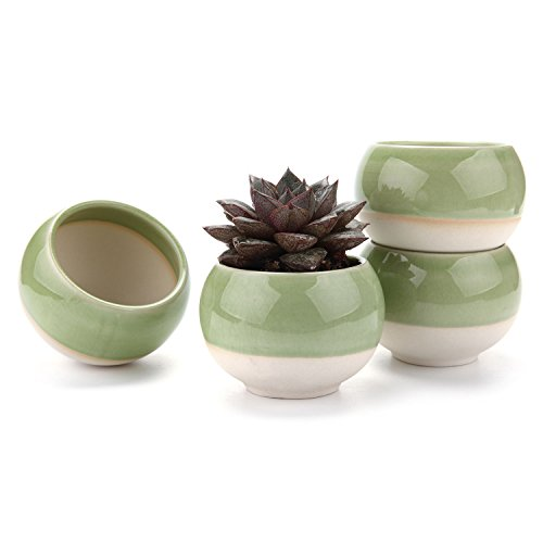 T4U 3 Inch Ball Shape Sucuulent Cactus Plant Pots Flower Pots Planters Containers Window Boxes Green 1 Pack of 4