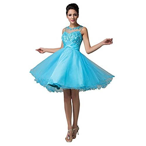 Cute Short Tulle Prom Dress With Applique for Juniors Size 6