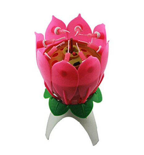 Ruichy Musical Happy Birthday Flower Candles Pink 1