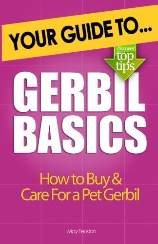 Gerbil Basics: How to Buy and Care for a Pet - Care Gerbil