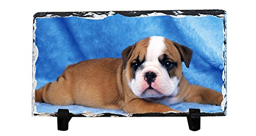 Y.H.X Personalized Slate Desktop Decoration Plaque - Wallpaper Puppy Custom Photo Slate (Desktop Plaques)