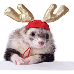 Marshall Pet Holiday Antlers for Ferrets and Small Animals