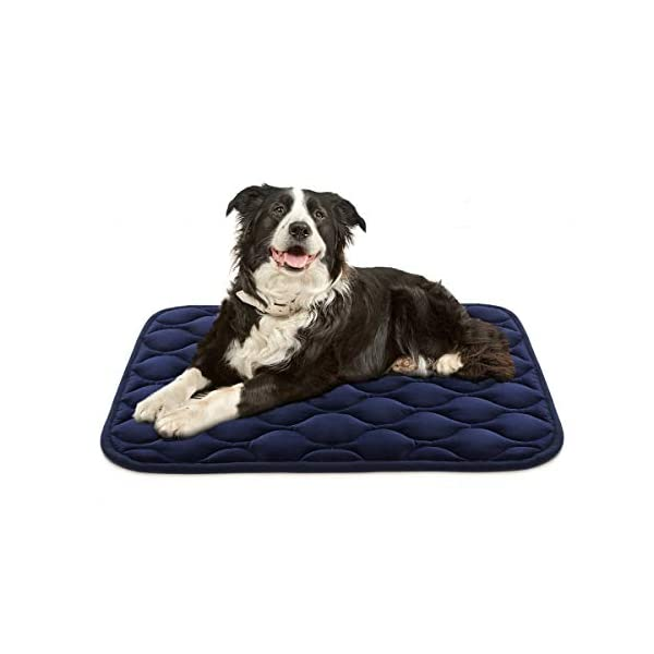AIPERRO Dog Crate Pad Washable Dog Bed Mat Dog Mattress Pets Kennel Pad for Large Medium Small Dogs and Cats, 35″ x 23″