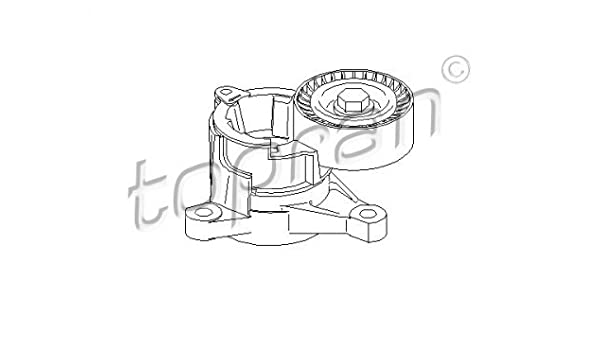 Amazon Com Tensioner Pulley Lever V Ribbed Belt Fits Citroen