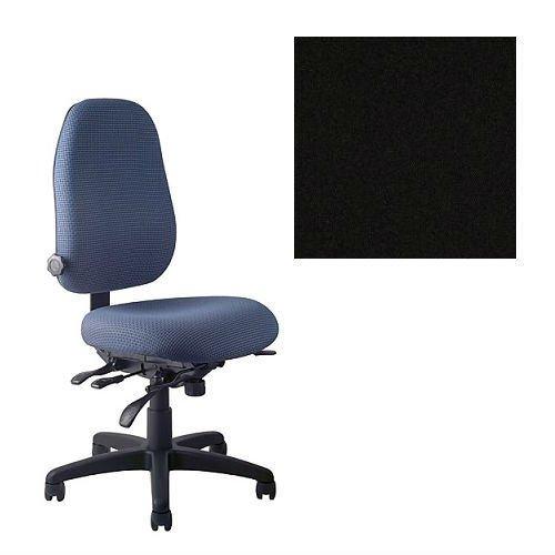 lection PT69 Ergonomic Task Chair - No Armrests - Grade 1 Fabric - Celestial Oberon Black 1200 PLUS Free Ergonomics eBook (Task Collection)