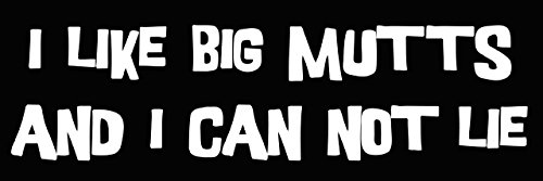 I Like Big MUTTS and I Can Not Lie Bumper Sticker (funny dog decal large)