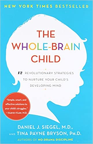 The Whole-Brain Child PDF