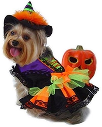 Prima Dog Witch Halloween Costume with Hat for Dogs (S for Dogs 6-9 lbs.) For Sale
