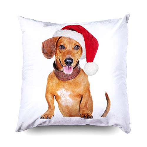 TOMWISH 20x20 Pillow Cases,Decor Pillow Covers, Zippered Decorative Throw Cotton Pillow Case Cushion Cover for Home Decor Dog hat Santa Animal Blank Blank Board Breed Brown Carnival Christmas Closeup