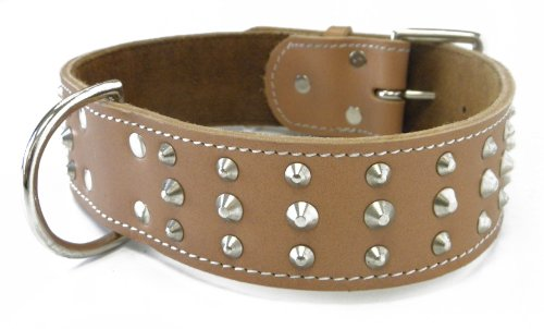 Platinum Pets 2-Inch Wide Signature Quality Double-Ply Genuine Leather Studded Dog Collar, Tan, My Pet Supplies