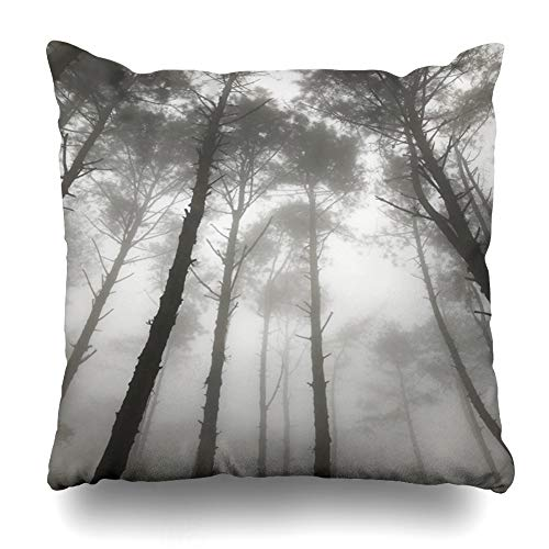 Ahawoso Throw Pillow Cover Square 18x18 Mystery Gray Angle Hazy Pine Tree Forest Sunlight Autumn Morning Nature Canopy Parks Black Branch Cold Cool Design Pillowcase Home Decor Cushion Case