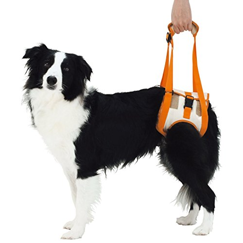 Alfie Pet – Kris Support & Rehabilitation Lifting Harness