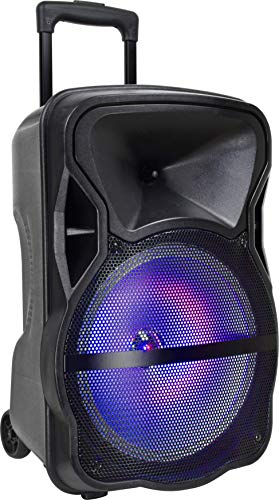 Sylavnia Tailgate Wireless Outdoor Bluetooth Speakers (12-inch)