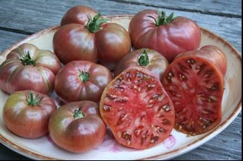 105+ Organic Watermelon Beefsteak Tomato Seeds - DH Seeds - UPC0742137106162 - 1 Plant Marker included