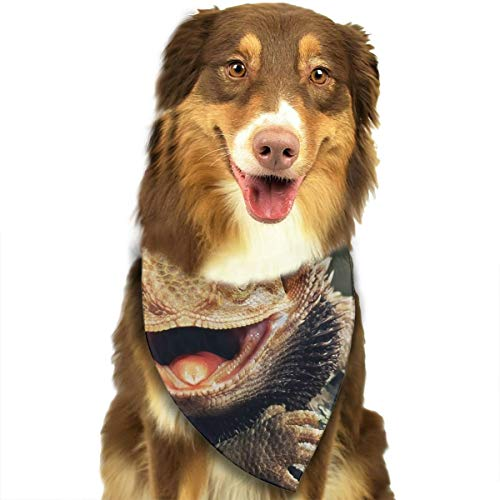 FRTSFLEE Dog Bandana Bearded Dragon Lizards Scarves Accessories Decoration for Pet Cats and Puppies -