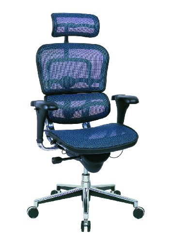 Ergohuman Me7erg - Ergohuman Executive Chair with Headrest in Blue - Ships in 24 Hours with a Lifetime Warranty!
