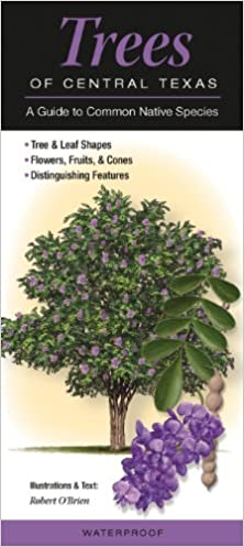 Trees Of Central Texas A Guide To Common Native Species Quick