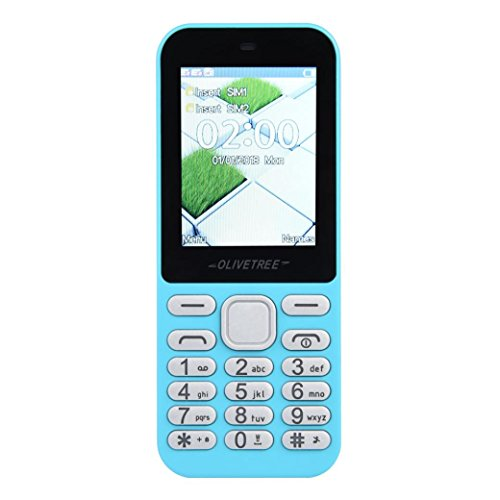 ell Phone Older Phone Camera 0.3MP Keyboard 3800mAh Battery Dual Sim With Outdoor Flashlight for Kids or The old man (Sky Blue) ()