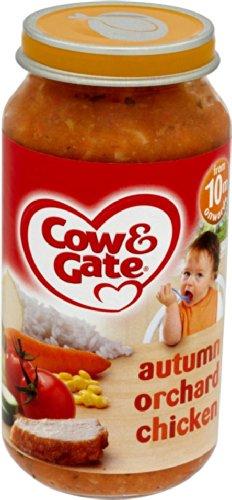 Cow & Gate 10 Month Autumn Orchard Chicken Jar 250g