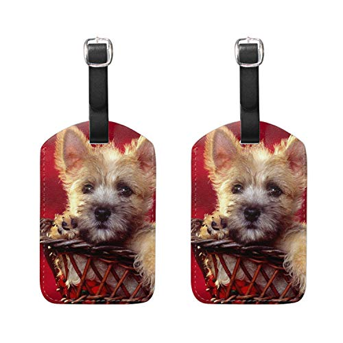 Luggage Tags - Bag Tag Name ID Set for Suitcase, Baggage Cairn Terrier Puppy ()