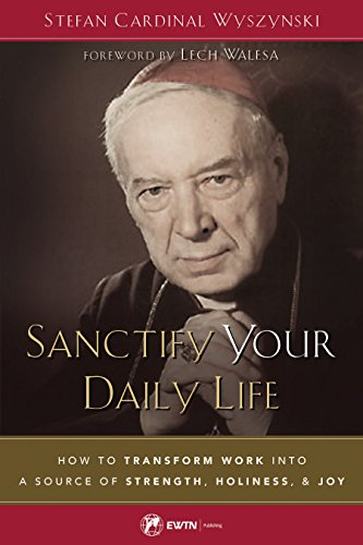 Sanctify Your Daily Life: How to Transform Work Into a Source of Strength, Holiness, and Joy (Saint To Pray To For Lost Things)