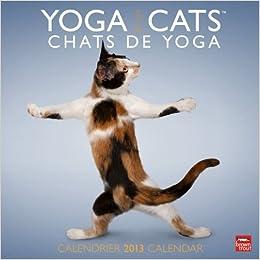 Yoga Cats/Chats De Yoga 2013 Calendar: 9781465004642: Amazon ...