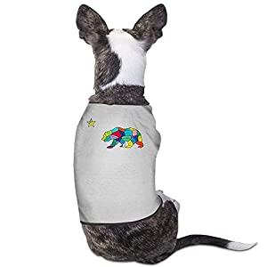 Theming California Republic Art Print Dog Vest