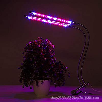 Caige Grow Lights for Indoor Plants, Indoor Plants, LED Plant Growth Lights, 20W Spectrum for Indoor Plant Growth Flowering Results: Home & Kitchen