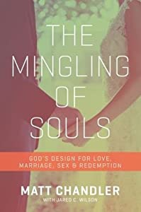 God's Design for Love, Marriage, Sex, and Redemption The Mingling of Souls