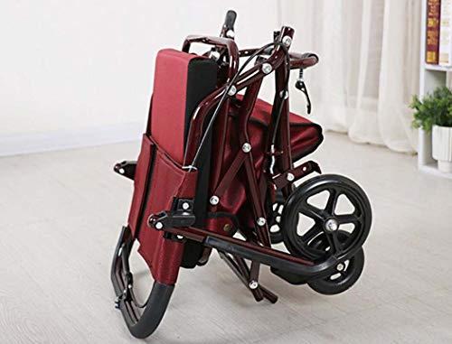 Amazon.com: GJX Old Man - Carro de la compra, paseador de ...