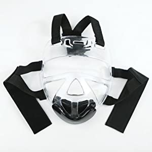 Well-Being-Matters 41KqfZT71YL._SS300_ MASTERLINE Universal FACE Shield - ONE Size FITS All