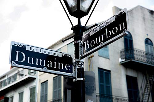 Bourbon Street Photography Art Print - Picture of Street Sign at Intersection of Dumaine and Bourbon in French Quarter New Orleans Decor 5x7 to 40x60